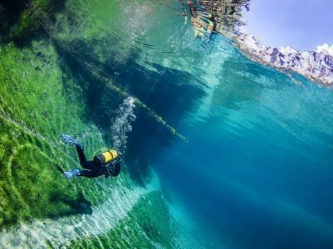 世界で唯一の「泳げる森」が絶景すぎる! 神秘のGruner See