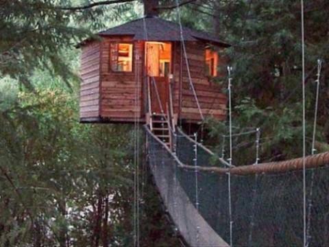 12に分かれた小屋ホテルに泊まろう! 大自然を満喫するアメリカの「Out'n'About Treesort」