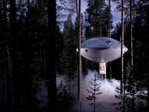 針葉樹林の森林浴を楽しめる癒やしのホテル! スウェーデン「ツリーホテル」