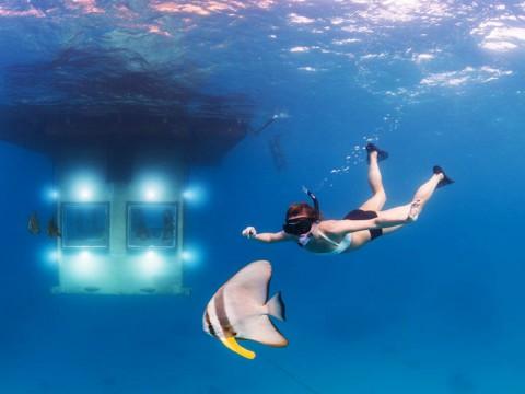 海底に沈む絶景ホテルに泊まってみませんか?海中を眺めながらベッドに入る!