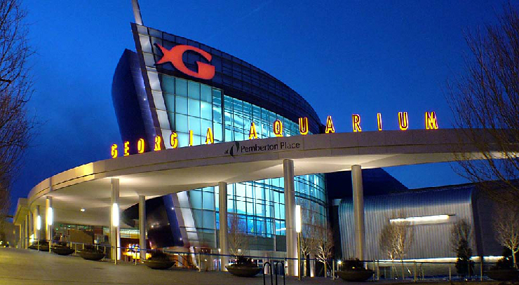new_show_image_Georgia_aquarium