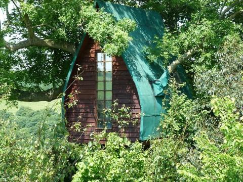 ツバメの巣のようなイギリス「ツリー・スパロウ・ホテル」がステキすぎる