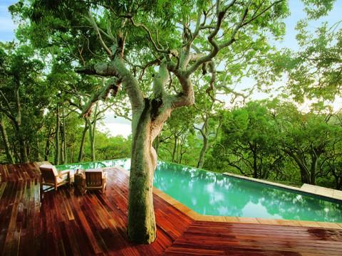 太古の地球にいるみたいな大自然の絶景ホテルに感動 / Pretty Beach House