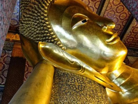 バンコクのワットポーは「子猫と絶品グルメ」がある最高の寺院だった!