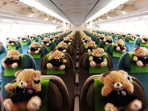 トランスアジア航空が小熊のぬいぐるみだらけになりました / 成田~桃園の機材をA330に一新