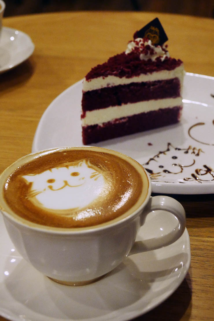 purr-cat-cafe-club11