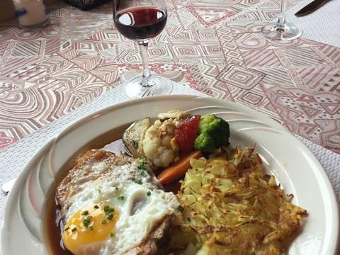 【旅行者必見】スイス観光で意外と大変だったこと / 英語がまったく通じない! 食事代が高額!
