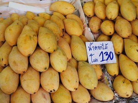 【絶品】タイに行ったら毎日マンゴーを食べるべし! マンゴーだらけのマンゴー屋で完熟マンゴー!