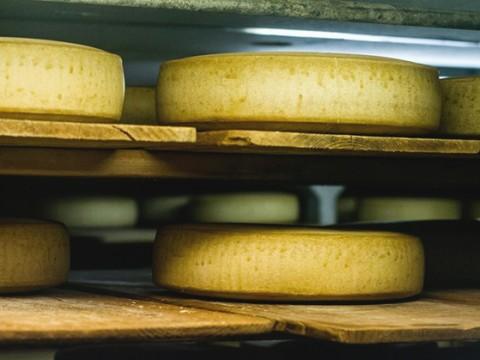 【現地取材】穴あきエメンタールチーズが本当に本当に本当に本当に心から美味しい件!