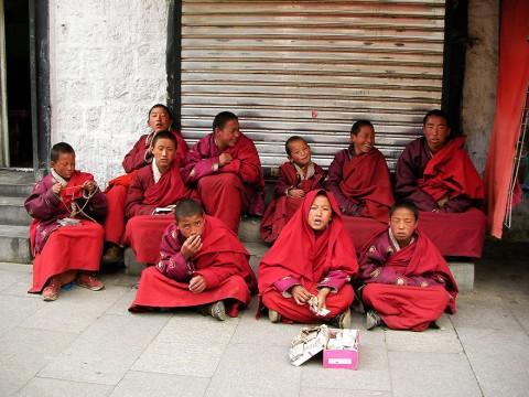 チベットで頑張るチビッ子僧侶たち / お経を唱えて寄付を募る「先輩僧侶が寄付する事もあります」