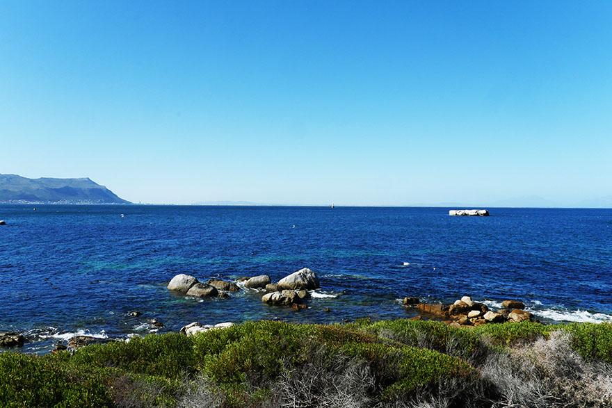cape-town-boulders-beach15