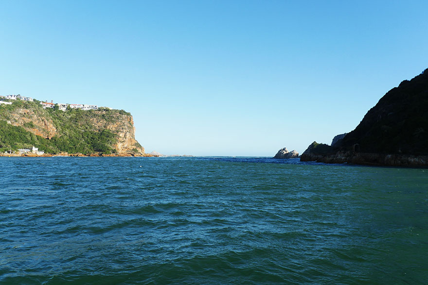 south-africa-knysna-oyster14