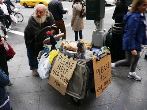 ニューヨーク・マンハッタンで犬や猫を引き連れて歩いている人 / お金を渡す? 渡さない?