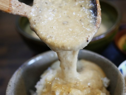 【静岡県がスゴイ】究極の「とろろ汁」が食べたいなら掛川市に行くしかない / いも汁処 本丸