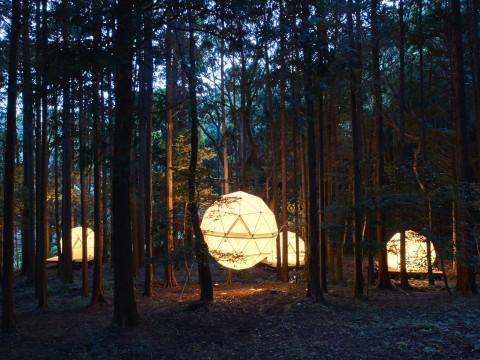 【革命】日本初の泊まれる公園「INN THE PARK」がオープン! 森に浮かぶ球体テントが幻想的