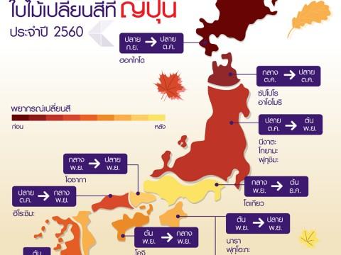 タイ国際航空がタイ人向けに日本の紅葉情報をLINE配信 / 秋だからこそ日本に行きたくなる