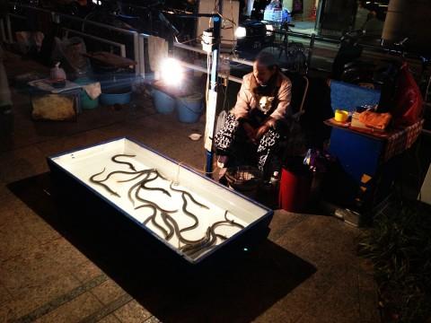 【衝撃】博多の中洲名物といえばウナギ釣り! 高級ウナギが500円で釣れるぞ! しかもその場で食べられる