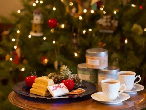 【楽園】星野リゾート界で満喫する大人のクリスマスイベント / 海のイルミネーションやクリスマスコンサート実施