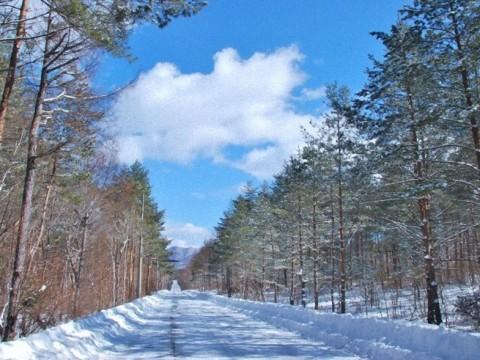 冬の森をドライブして絶品スイーツを満喫 / 寒いからこそ楽しめるアウトドア体験「軽井沢アイスクルーズ」がスタート!