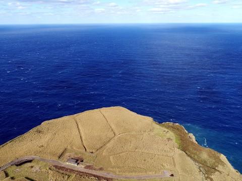 【ドローン絶景】伝説の青ヶ島で唯一の牧場を空撮 / 断崖絶壁でのんびり暮らす牛たち
