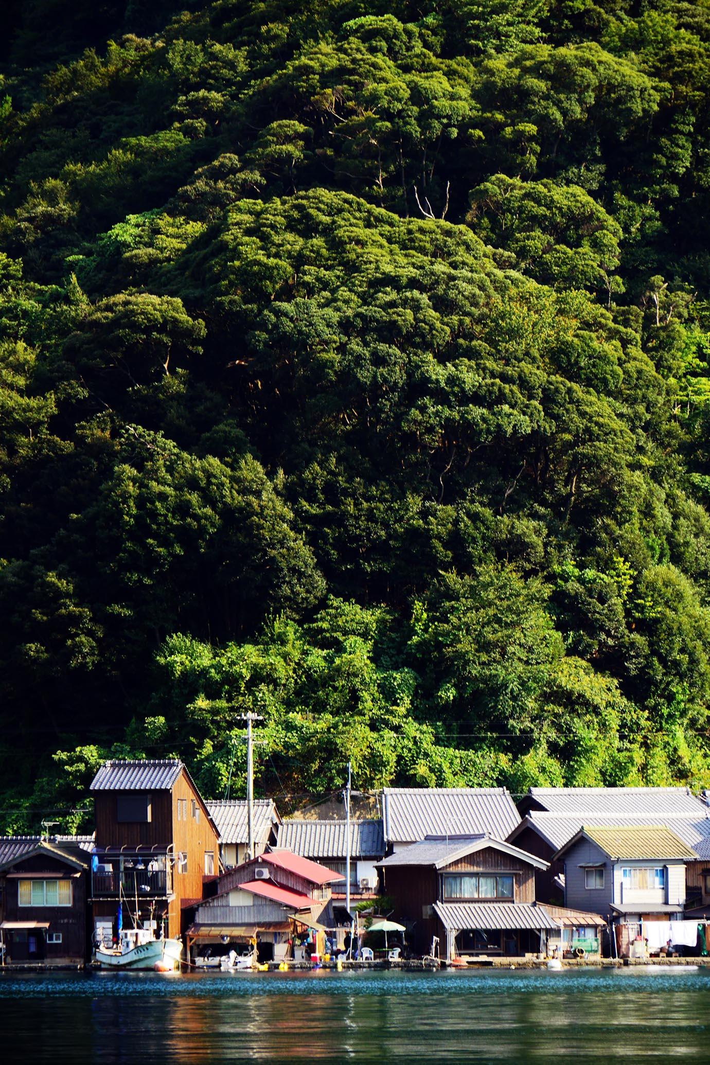 kyoto-inecho-fuuga20