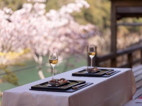 【贅沢】ライトアップされたヤマザクラにうっとり / 星のや京都が1日1組限定の「夜桜ディナー」を提供