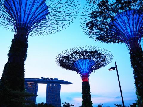 【夢のシンガポール】無料で観光ツアーに参加できちゃう! 嬉しすぎるチャンギ国際空港の特典