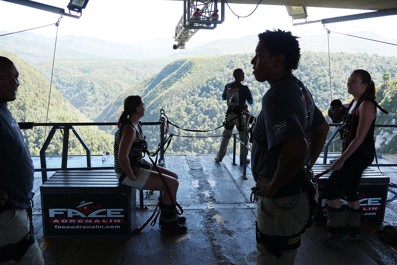 bungee11