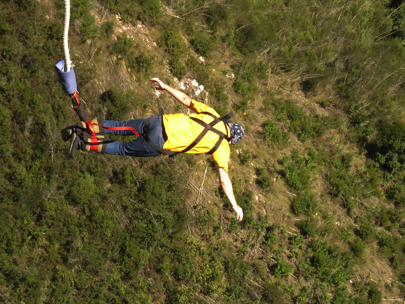 bungee2
