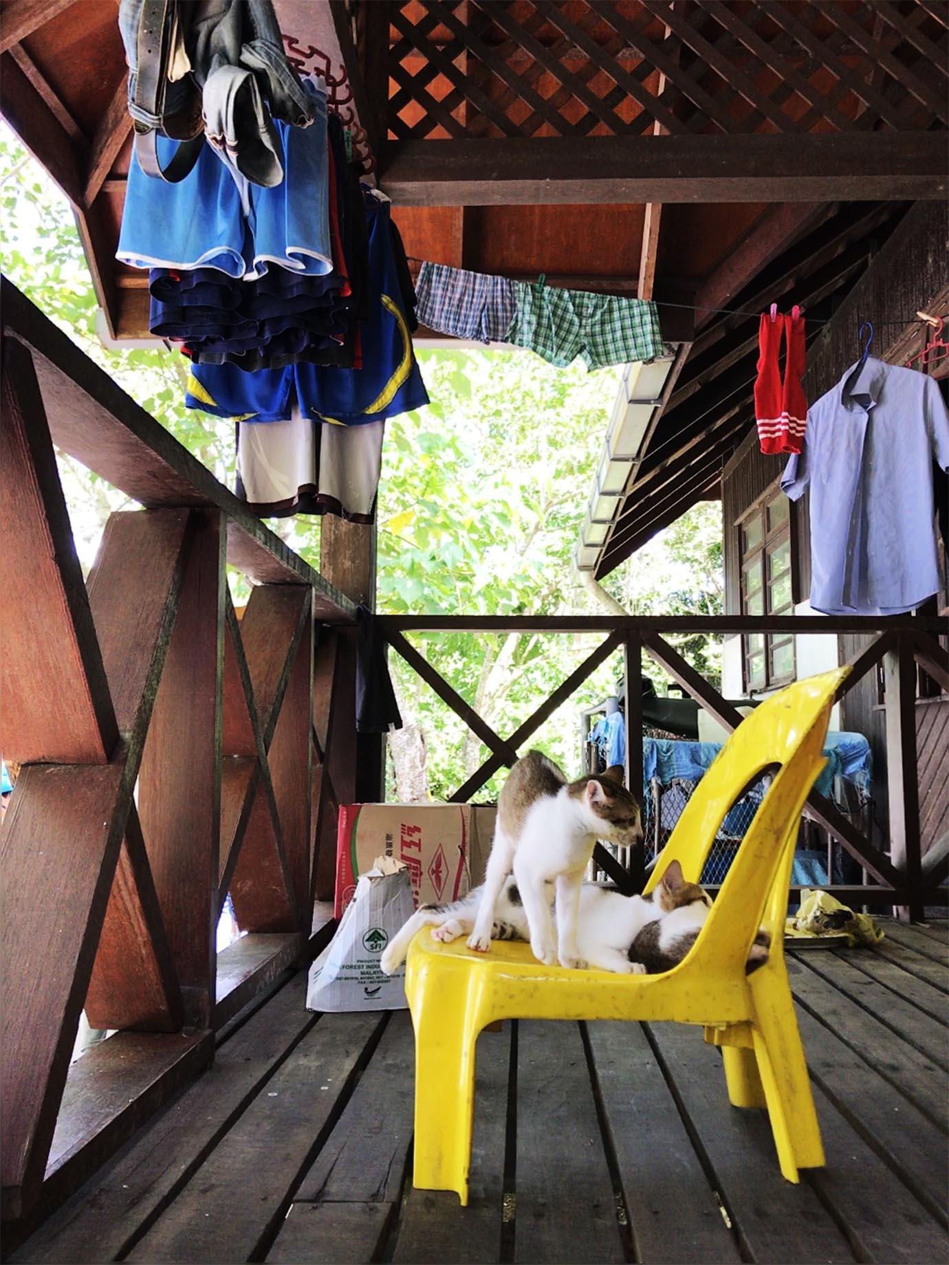 adventure-borneo-island-malaysia5