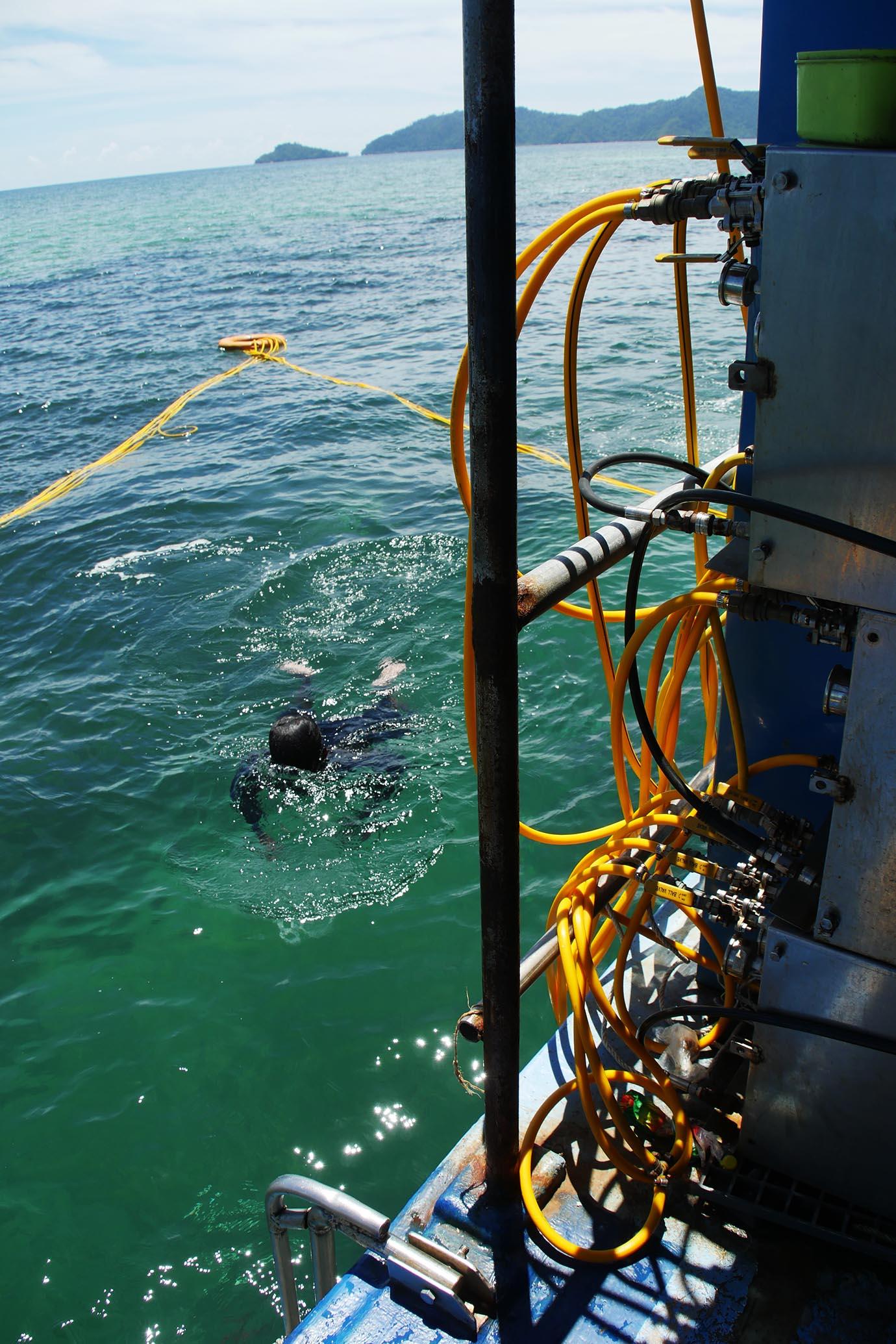 diving-in-kota-kinabalu7