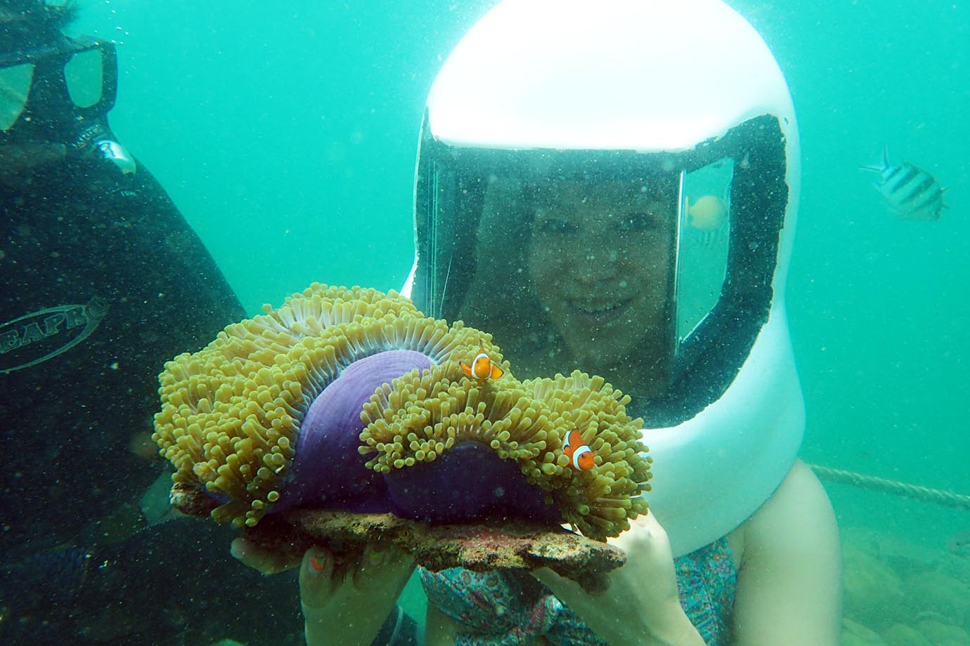diving-in-kota-kinabalu8