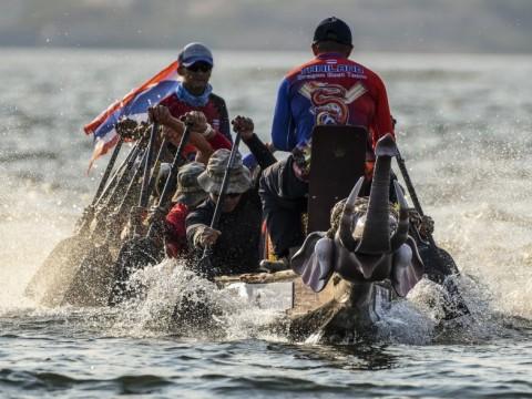 【話題】初開催のビッグイベント! タイのシンボル・ゾウを称えるボートレース&フェスティバルに注目