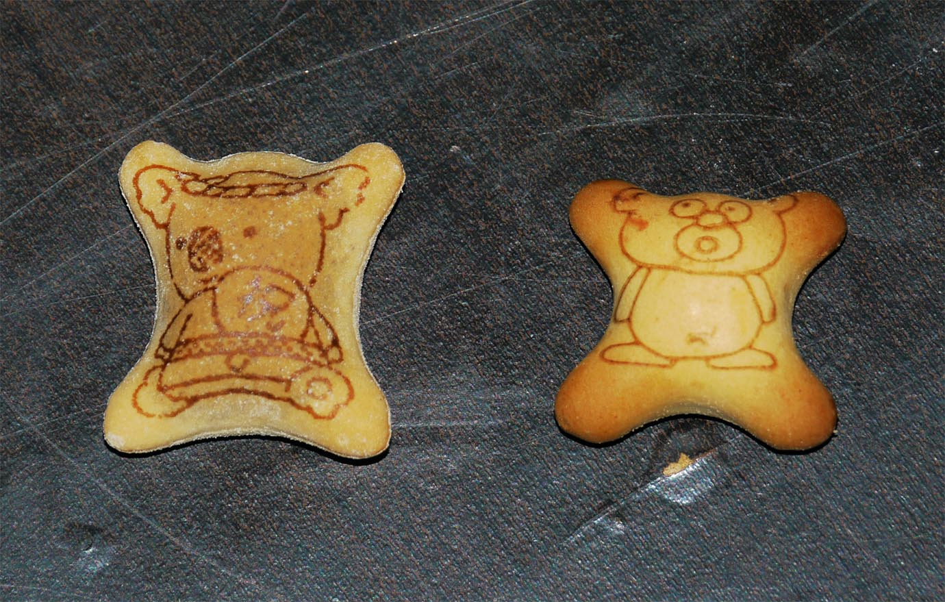 golden-bear-kinkuma4