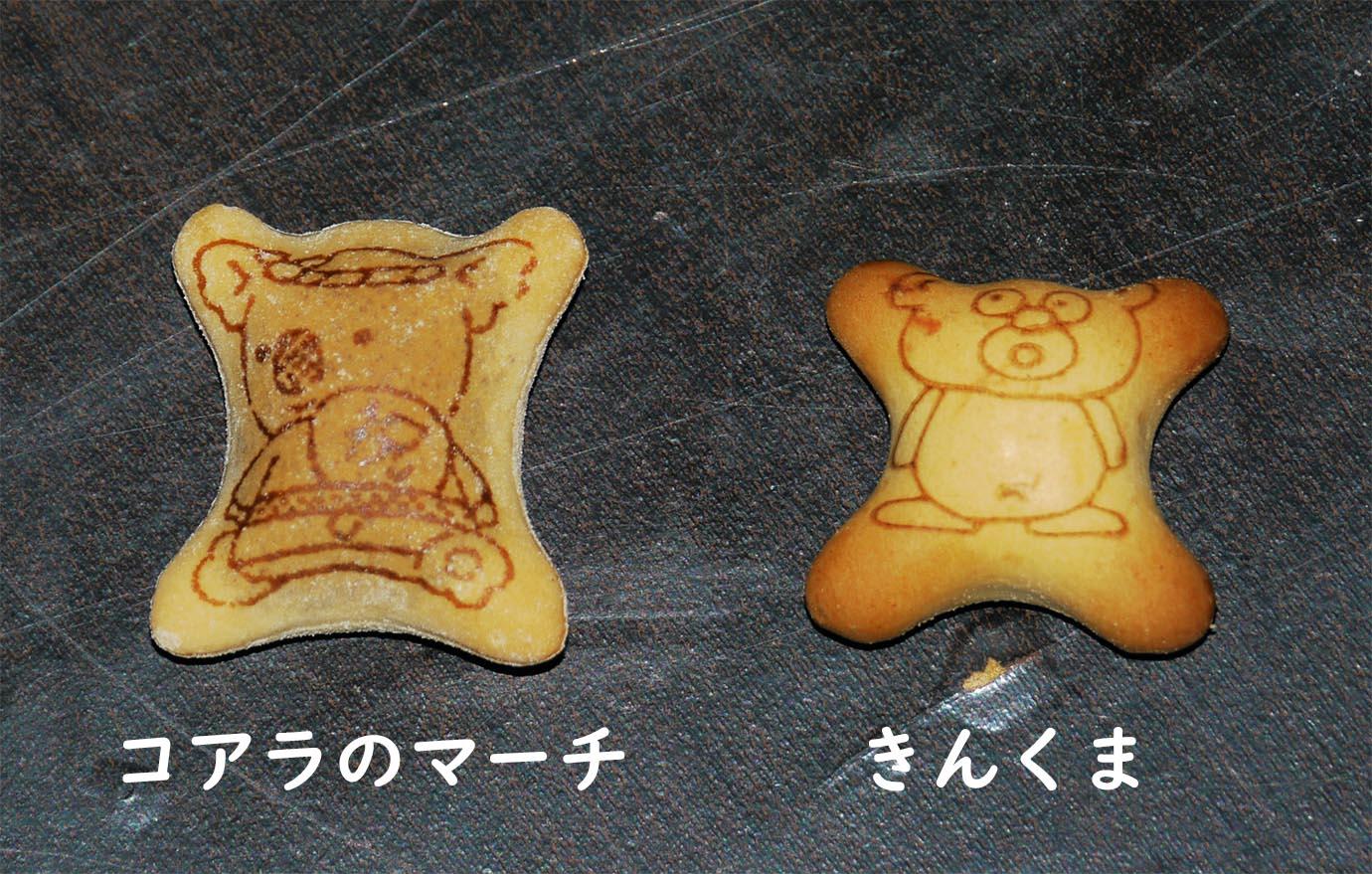 golden-bear-kinkuma5