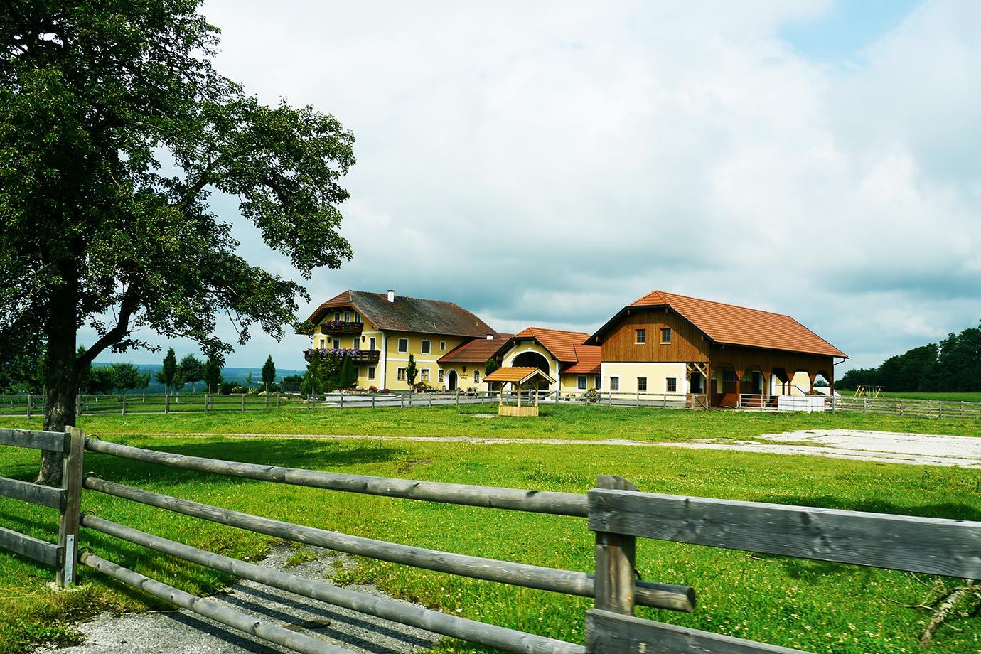healed-in-an-austrian-village3