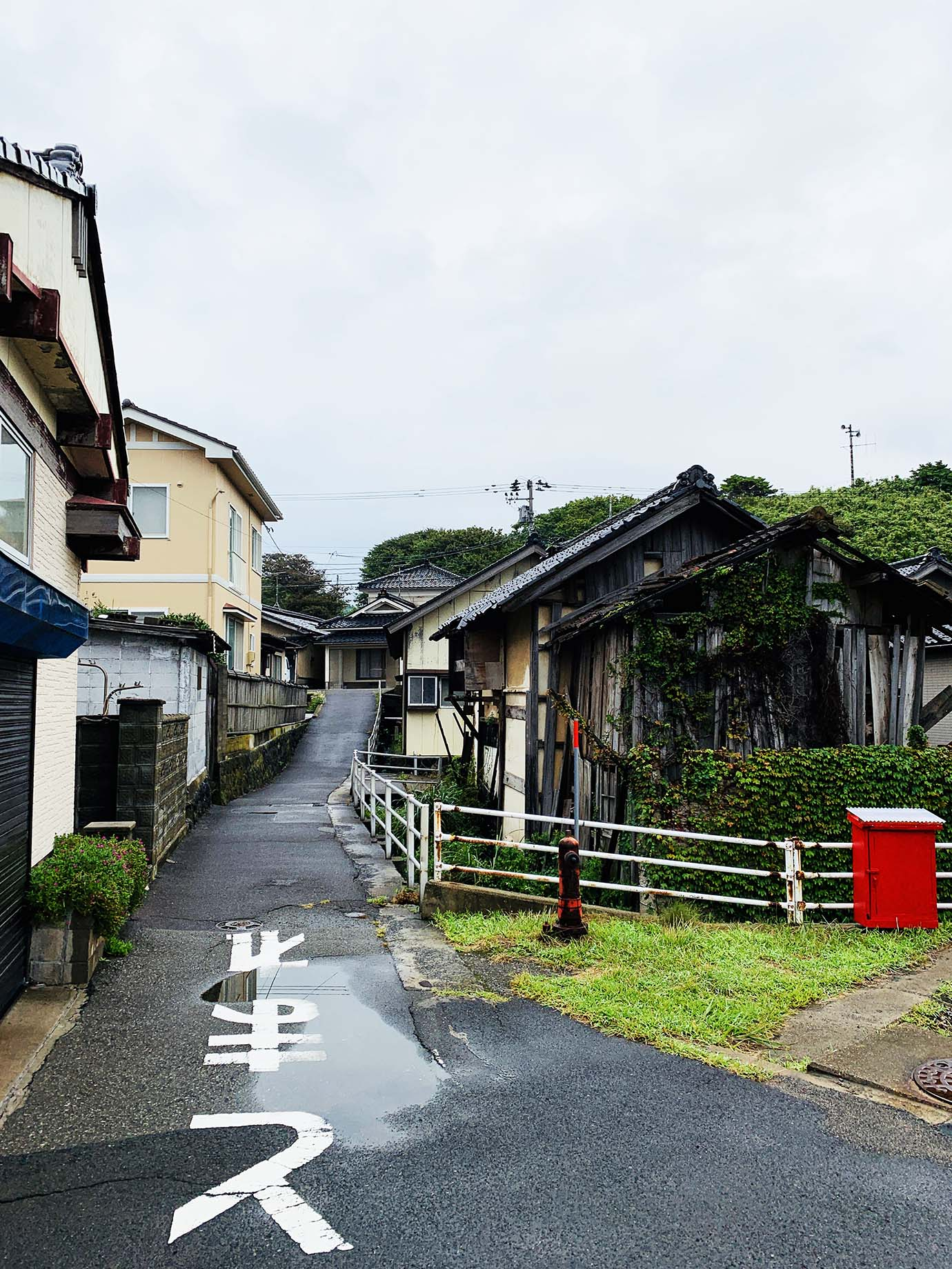yamagata-yuza7