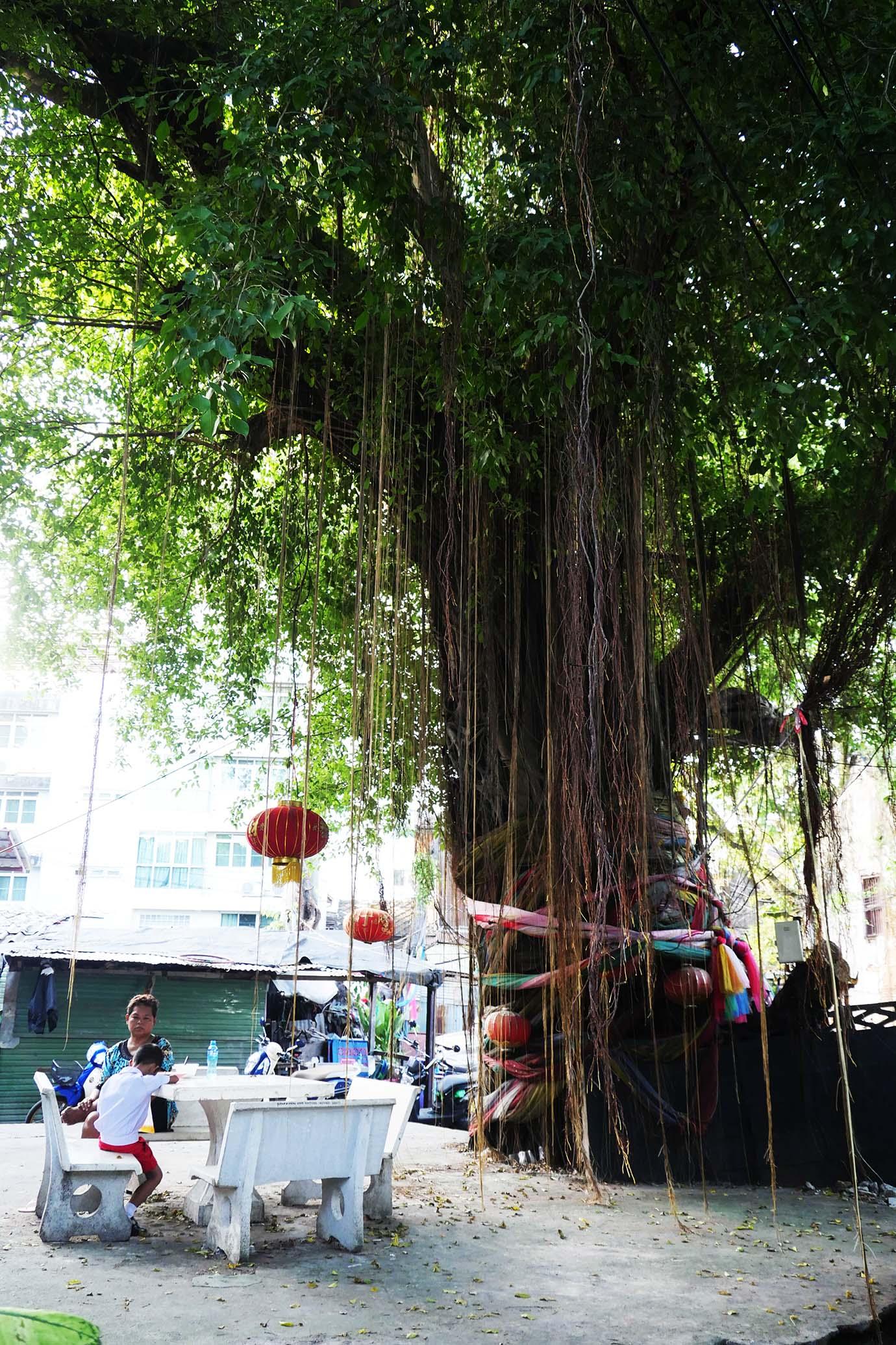 so-heng-tai-mansion23