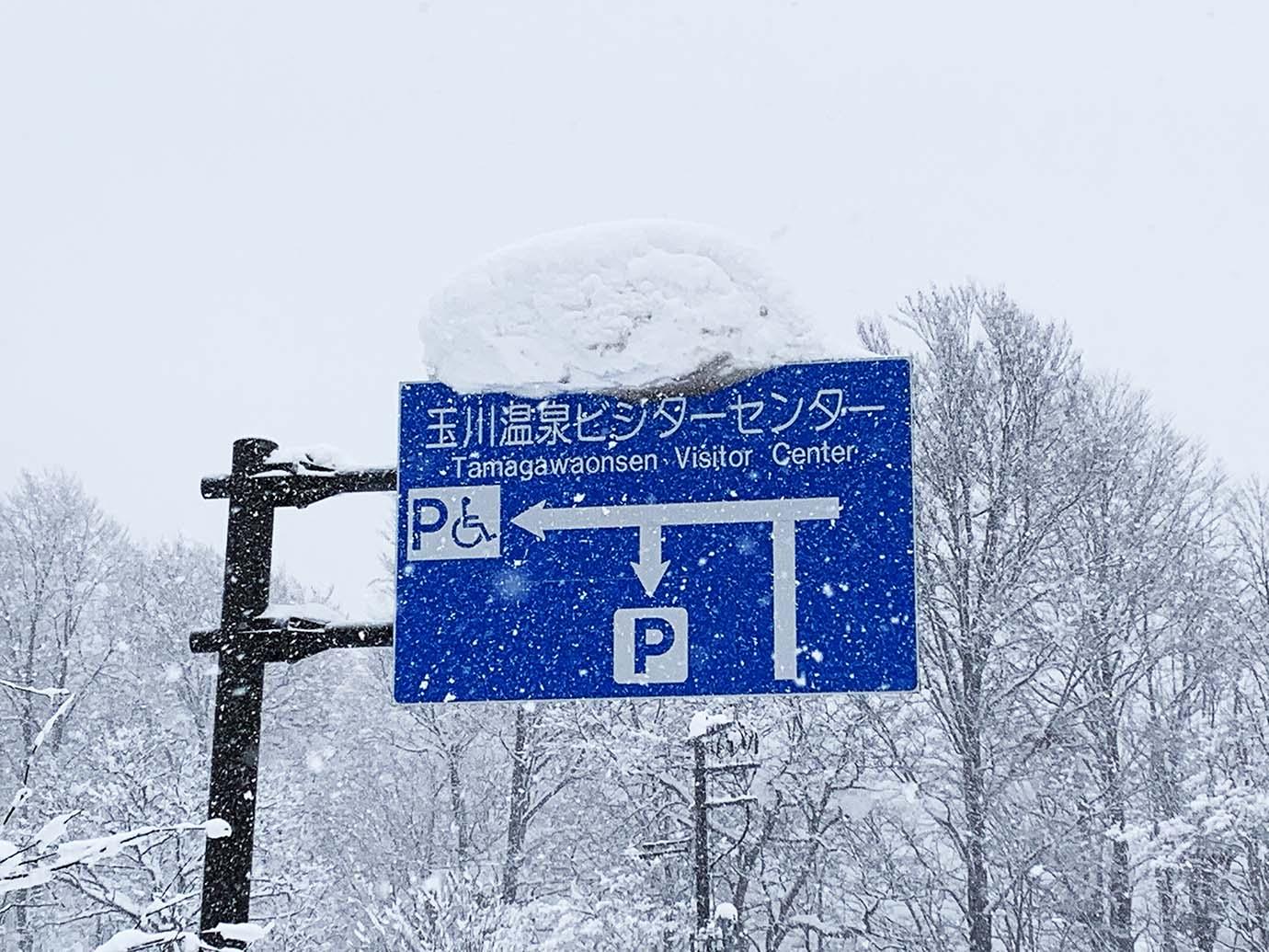 tamagawa-akita7