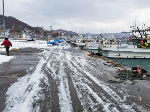 【北海道】えりも観光協会の発言が話題「温泉にちょっと入ったぐらいで健康になったデータはない」